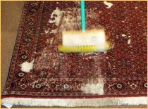 Pooshan Full Line of Rug Services